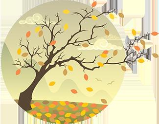 fall_tree_325